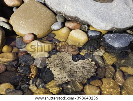 Ice crystals on the surface of shallow water with smooth pebbles and a single leaf