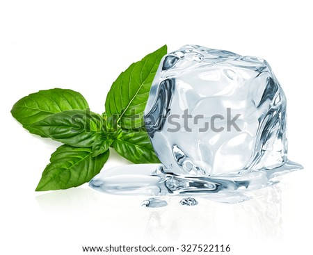 Ice cube and basil leaves isolated on white background - stock photo