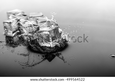 Ice Cube is square Drop to the ground water with black and white filter