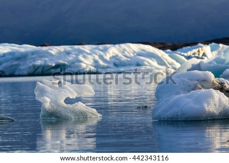 Ice figure similar to a skull of an animal in lagoon with ice in the evening, Iceland