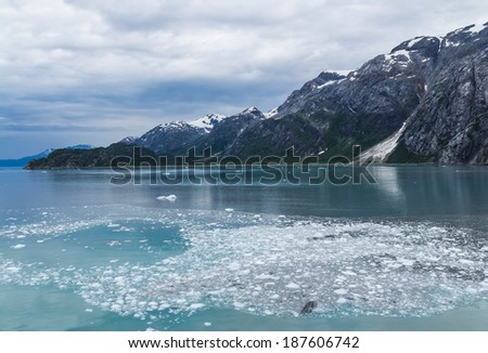 Ice float on the sea in Glacier Bay National Park and Preserve, Alaska, USA - stock photo