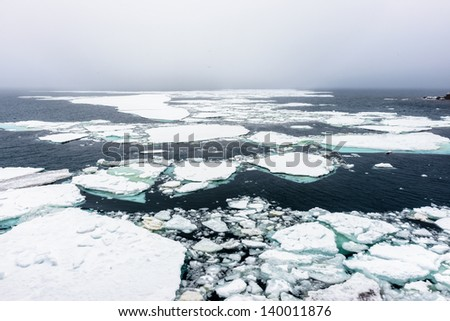 Ice floes on the water - stock photo