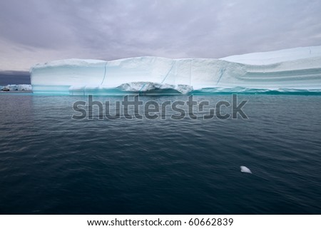 Iceberg in the famous icefjord beside the city of Ilulissat in Greenland. The icefjord is on UNESCO's World Heritage List.