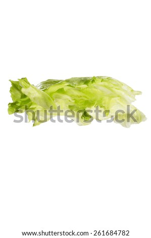 Iceberg Lettuce Leaves - stock photo