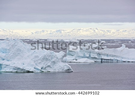 Icebergs are on the arctic ocean
