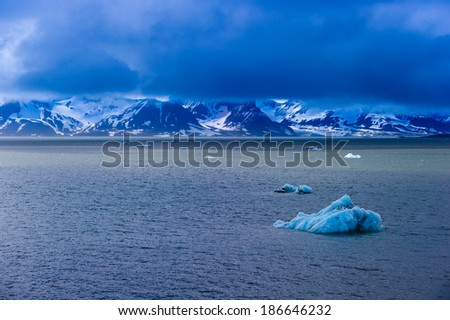 Icebergs floating in a fjord in the Arctic circle, Hornsund, Norway