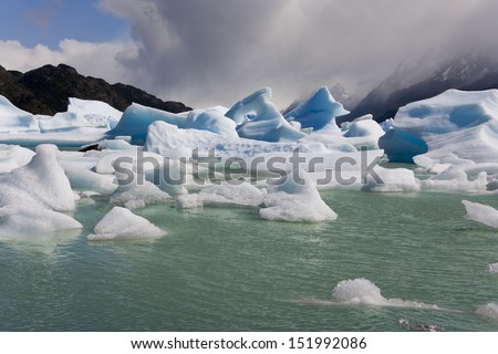 Icebergs from the Grey Glacier floating in Largo Grey in Torres del Paine National Park in Patagonia in southern Chile in South America.