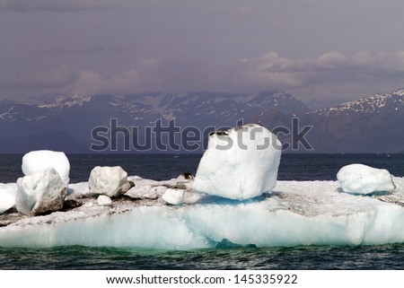 icebergs in the sea - stock photo