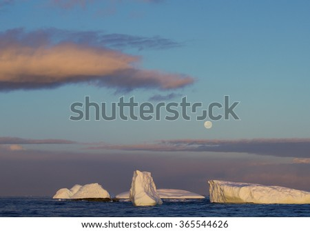 Icebergs on the sea with Moon, blue sky and red cloud, Antarctic Peninsula, Antarctica