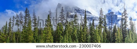 Icefield Parkway in Jasper National Park, Alberta, Canada - stock photo