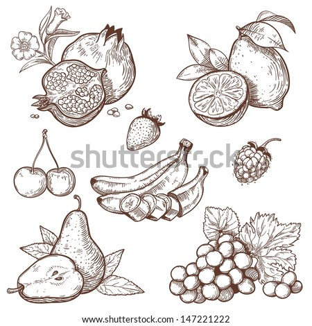 Icons of sweet fruits and berries on a white background  - stock photo