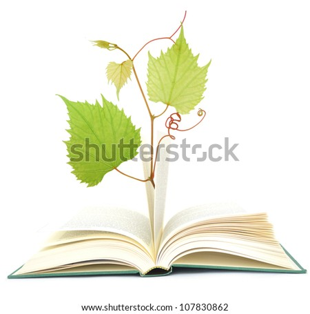 Idea of learning success - stock photo