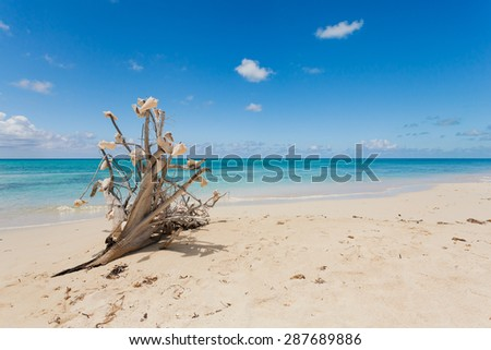 Idyllic beach with crystal clear water in Bahamas - stock photo