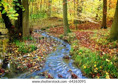 Idyllic creek in a fabulous autumnal wood - stock photo