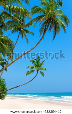 Idyllic empty tropical beach with clean white ocean sand and palm trees over the water - stock photo