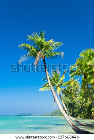 Idyllic Island Exotic Paradise - stock photo