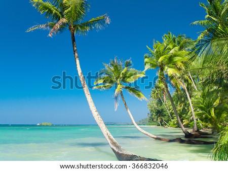 Idyllic Island Exotic Paradise  - stock photo