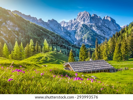 Idyllic landscape in the Alps in springtime with traditional mountain chalet and fresh green mountain pastures with blooming flowers in beautiful evening light at sunset - stock photo