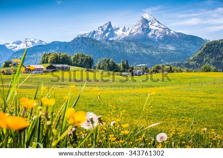 Idyllic landscape in the Alps with fresh green meadows, blooming flowers, typical farmhouses and snowcapped mountain tops in the background, Nationalpark Berchtesgadener Land, Bavaria, Germany - stock photo