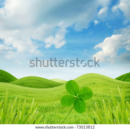 Idyllic landscape with fresh green grass and four-leaf clover - stock photo