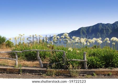 idyllic maderia - stock photo