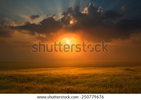 Idyllic misty sunset and clouds over wheat field towards the setting sun. - stock photo