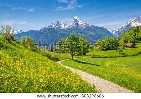 Idyllic summer landscape in the Alps with fresh green mountain pastures and snow-capped mountain tops in the background, Nationalpark Berchtesgadener Land, Bavaria, Germany - stock photo