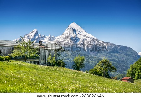 Idyllic summer landscape with traditional farm house in the Alps - stock photo