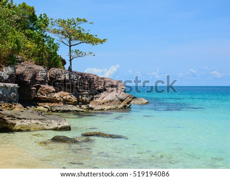 Idyllic tropical beach with green trees in sunny day