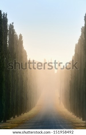Idyllic Tuscan landscape with cypress alley at sunrise near Pienza, Vall d'Orcia Italy, Europe - stock photo