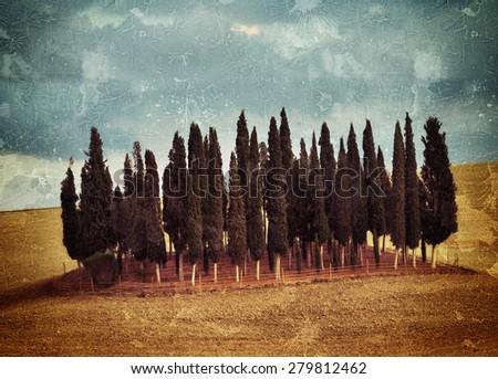 Idyllic Tuscany rural  landscape near Pienza, Italy, Europe. Plowed field on the Crete Senesi hills. Altered image. Vintage effect applied  - stock photo