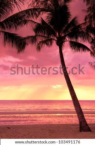 Idyllic Wallpaper Burning Skies - stock photo