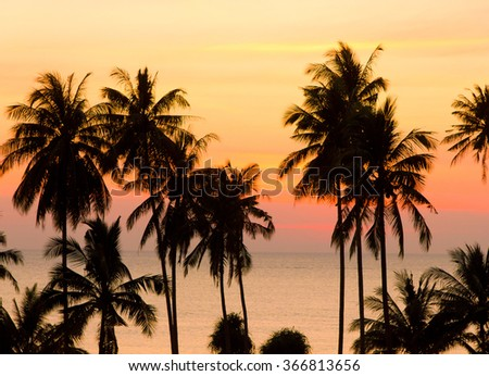 Idyllic Wallpaper Palm Paradise  - stock photo