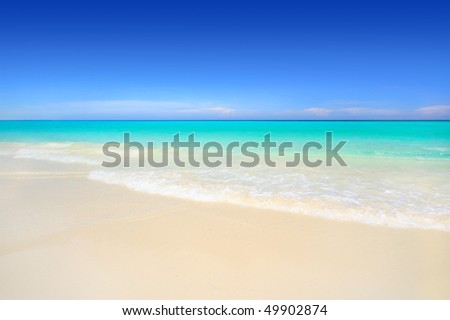 Idyllic white sand tropical beach with turquoise blue ocean. Travel & tourism collection.
