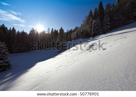 idyllic winter landscape