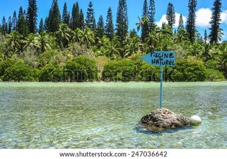 Isle des pins stock photos images pictures shutterstock for Piscine naturelle ile des pins
