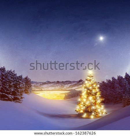 Illuminated Christmas Tree in the woods - stock photo