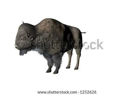 Illustrated American buffalo or bison