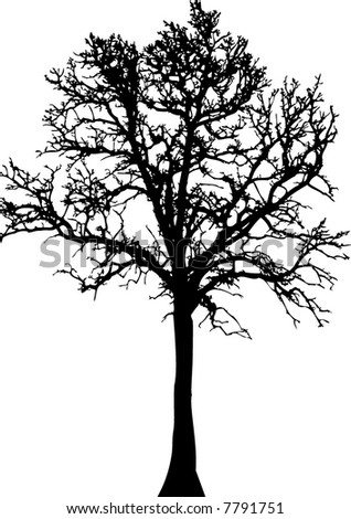 Illustrated silhouette of a tree