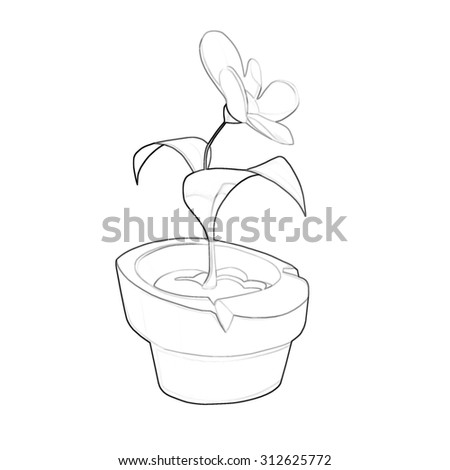 Illustration Coloring Book Series A Potted Flower Soft Thin Line Print It