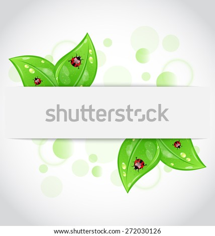 Illustration eco green leaves with ladybugs sticking out of the cut paper - raster