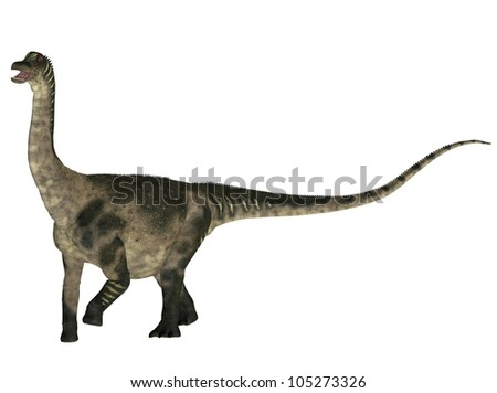 Illustration of a Antarctosaurus (dinosaur species) isolated on a white background - stock photo