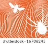 Illustration of a fly trapped in a spider's web - stock photo