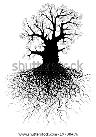 Illustration of a leafless oak tree with root system - stock photo