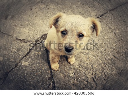 Illustration of a little homeless puppy in the street - stock photo