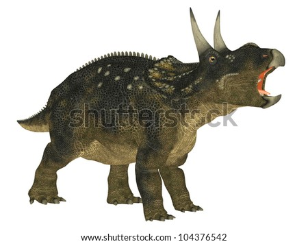 Illustration of a Nedoceratops (dinosaur species formerly known as Diceratops) isolated on a white background - stock photo