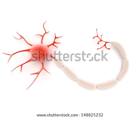 Illustration of a neuron or nerve cell from the central nervous sytem showing the cell body or soma, dendrites and axon which act as conductors and receptors in transmission of signals - stock photo