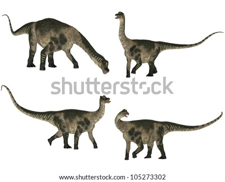 Illustration of a pack of four (4) Antarctosaurus with different poses isolated on a white background - stock photo