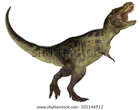 Illustration of a Tyrannosaurus (dinosaur species) isolated on a white background - stock photo