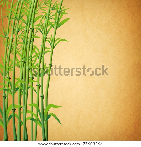 illustration of bamboo branches